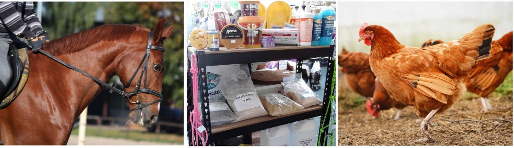 Stock feed and horse supplies